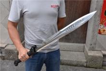 01557黑色虎头鲨(一体剑)